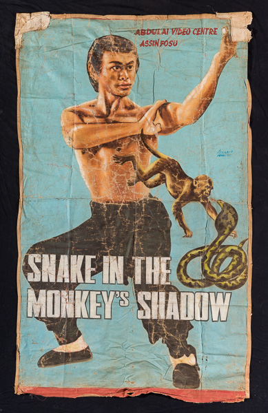 Snake in the monkey's Shadow